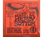 Ernie Ball Skinny Top Heavy Bottom 2215