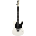 Fender Jim Root Telecaster® Ebony Fingerboard Flat White
