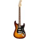 Player Stratocaster® Plus Top PF Tobacco Sunburst
