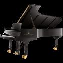 Concert-Verhuur Model D-274